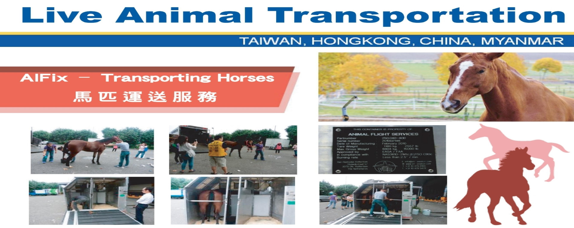 Live Animal Transportation